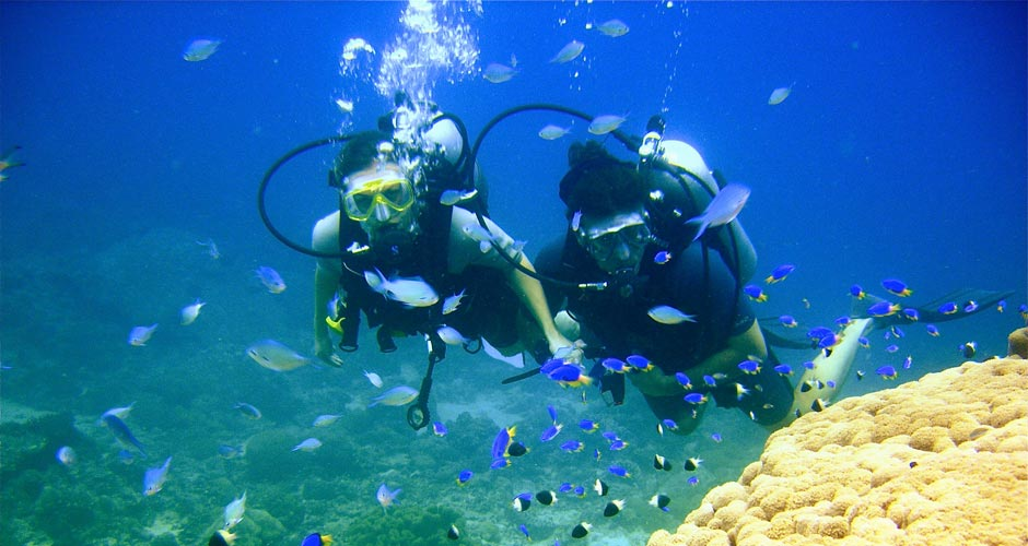 seychellen reisen net